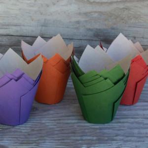 New: Elite Ecru Tulip 160 – Fall Four Pack: Eggplant, Pumpkin, Pine and Cherry